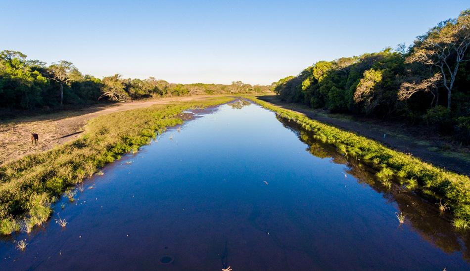 río Negro y su sistema lacustre