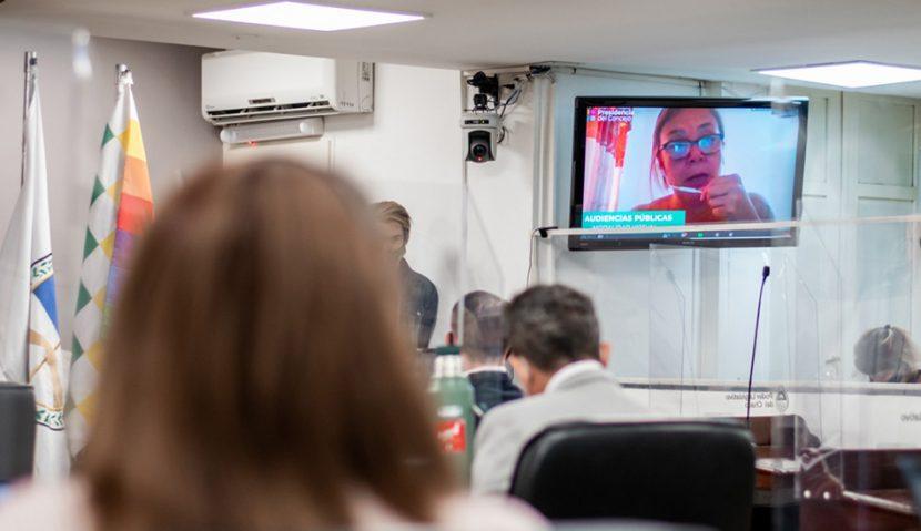 Primeras audiencias públicas virtuales del concejo de Resistencia
